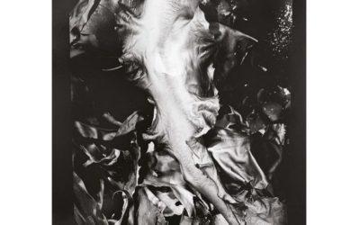 Olivier Meriel | Chambre Noire